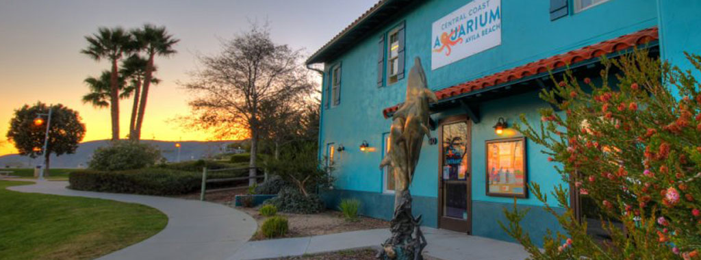 The Central Coast Aquarium is opening soon!!!
